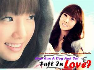 How can dog and cat fall in love?! - comedy fluff jessica ...