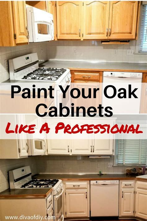 pro kitchen cabinets 1662 best home improvement projects images on 1662