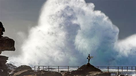 Surfer Sydney Bing Wallpaper Download