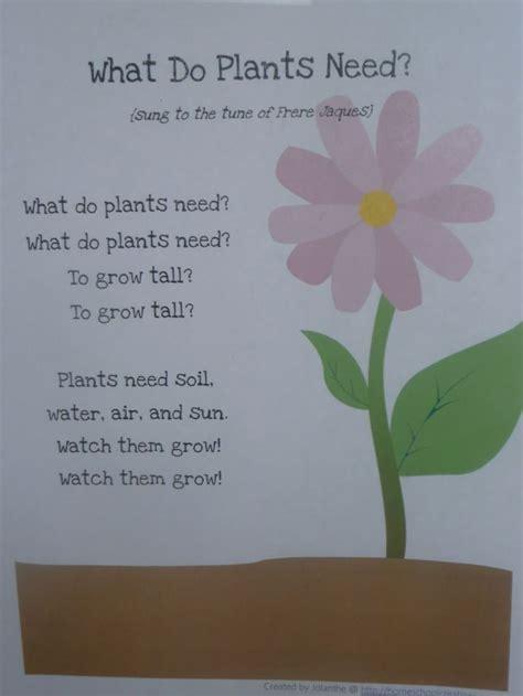 garden theme for preschool preschool garden theme search habitat plants 560