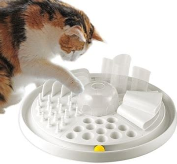 katzenspielzeug intelligenzspielzeug cat center katzen