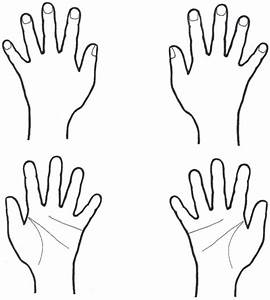 Examples of hand stimuli. The schematic drawing could d ...