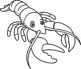 Lobster Coloring Outline Pages Cartoon Drawing Buoy Spiny Claw Colouring Line Template Drawings Luxury Realistic Sea Wecoloringpage Draw Getdrawings Sketch sketch template