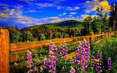 Desktop Spring Early Backgrounds Springtime Wallpapersafari