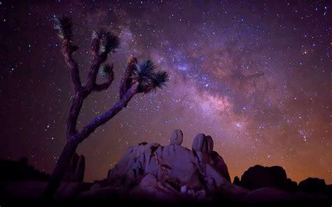 The Star Sky Milky Way Desert Area With Rock Cactus Joshua