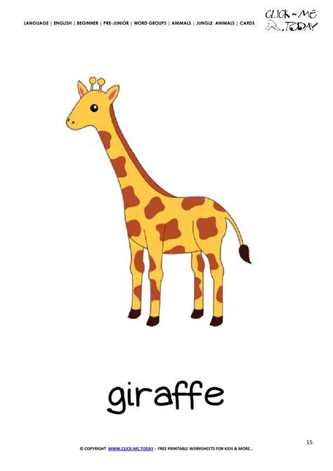 jungle animal flashcard giraffe printable card  giraffe