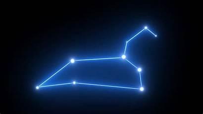 Leo Constellation Night Star Starry Background Shutterstock