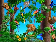 Jungle Clip Art   Clip...
