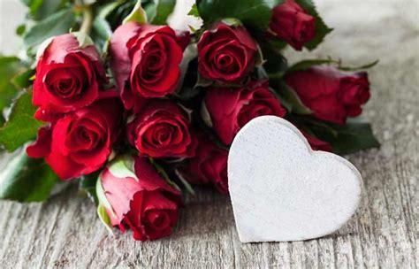 potager cuisine la l amour avec un grand a signification des fleurs comprendre la