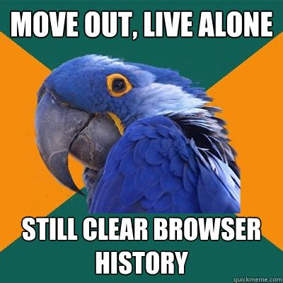 Moving Out Meme - move out live alone still clear browser history paranoid parrot quickmeme