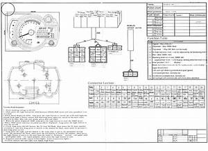 Suzuki Sv650 Wiring Diagram  Suzuki  Auto Fuse Box Diagram