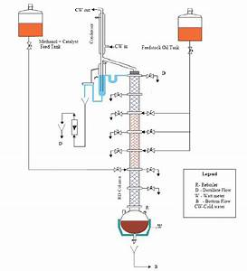 B  Schematic Diagram Of Experimental Setup Of Continuous