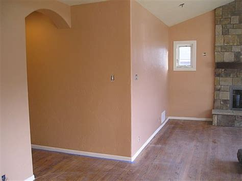 Best Living Room Paint Colors 2014 by Painting Walls With A Roller