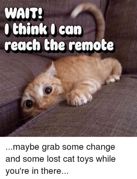 Lost Cat Meme - wait think can reach the remote maybe grab some change and