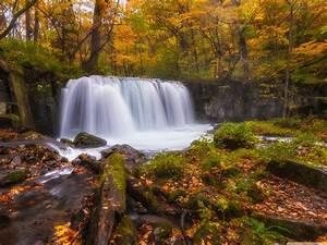 Nature, Forest, Autumn, Amazing, Beauty, Waterfall