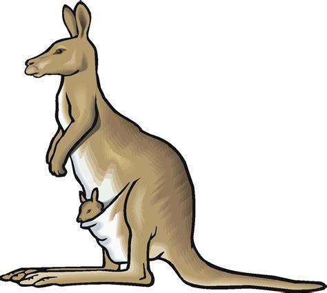 kangaroo clipart  clipartioncom