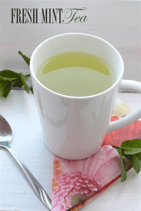 how to make fresh tea fresh mint tea recipe dishmaps