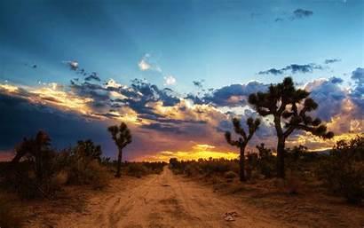 Desert Mojave America North Wallpapers Sunset 4k