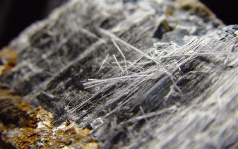 theory precluded  asbestos case cmbg law