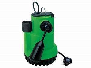 Pompe A Eau Castorama : pompe de relevage eau charg e guinard nautilus 2 340w ~ Dailycaller-alerts.com Idées de Décoration