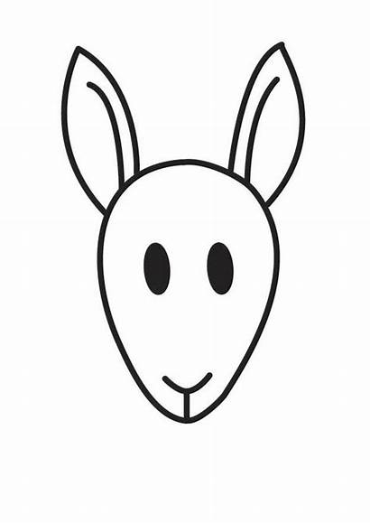 Kangaroo Coloring Head Pages
