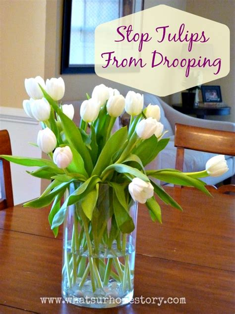 How To Preserve Flowers In A Vase by 4 Tricks To Keep Tulips In A Vase From Drooping