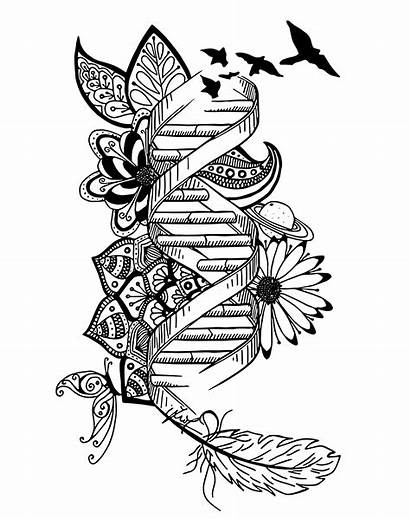 Dna Drawing Genetics Coloring Doodle Mindfulness Instant