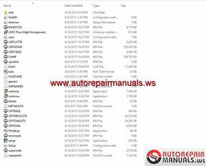 Keygen Autorepairmanuals Ws  Cummins Highhose Cepc V3 2005