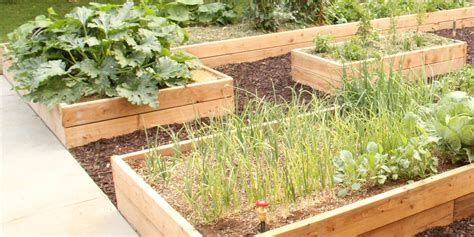 Garden In A Box by Remodelaholic Custom Raised Garden Boxes