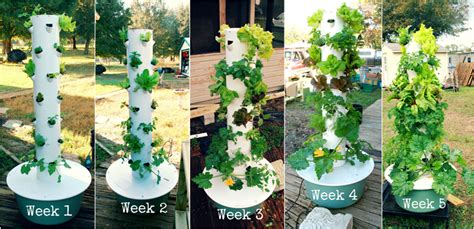 tower garden for vertical aeroponic tower garden