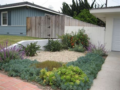 drought resistant landscaping drought tolerant landscaping plans lose the lawn quot drought tolerant landscape design water
