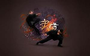 Martial Arts Wallpaper and Background | 1680x1050 | ID:184176