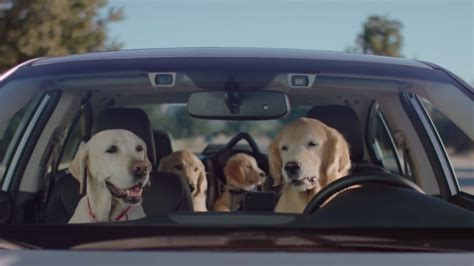 Subaru Skips The Super Bowl Brings Back The Driving Dogs Autoblog