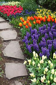 Spring Flower Garden Path