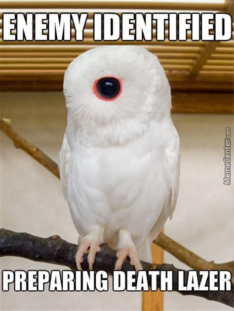 White Owl Meme - cyborg owl wants your flesh by applesnapple meme center