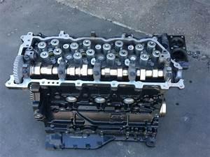 Download 1998 Isuzu Npr  Npr W3500  W4500   V8 Gasoline