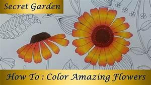 How To : Color Amazing Flowers | Secret Garden Coloring ...