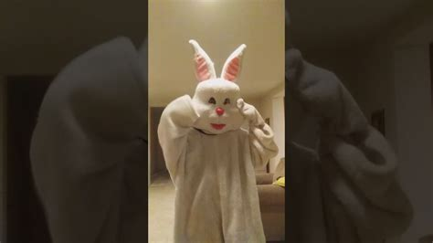 Featuring an assortment of easter bunnies making goofy faces, stick. Jack the Easter bunny face reveal at concert - YouTube