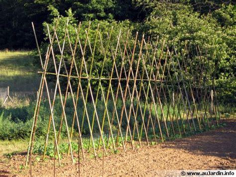 cuisiner des aubergines tuteurer plantes arbres et arbustes