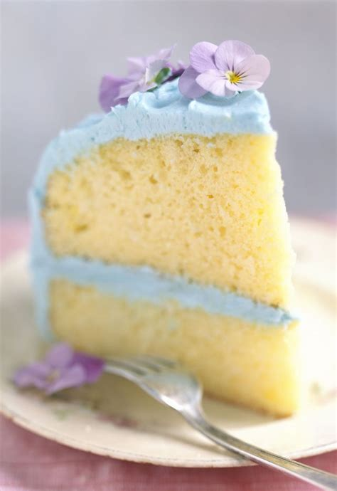 fluffy sponge cake recipe 25 best ideas about cake recipes on