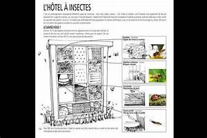 Abri à Insectes : hotel 0 insectes plan qwant recherche h tel abri ~ Premium-room.com Idées de Décoration
