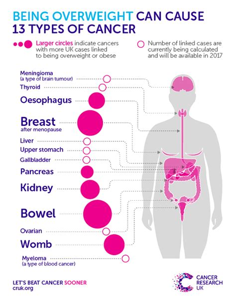 overweight  cancer cancer research uk