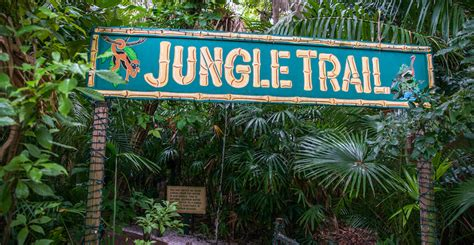 Jungle Garden Sarasota - sarasota jungle gardens directions info map hours