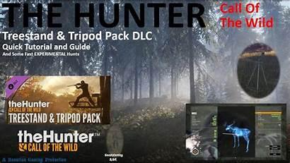 Wild Call Dlc Hunter Release