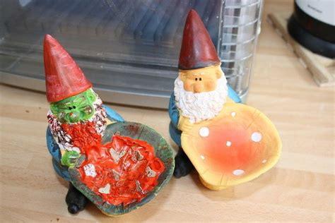transforming cute gnomes  zombie gnomes  garden