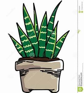 Plant Stock Illustration - Image: 65795200