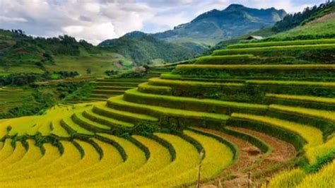 lao cai ranked  top  worlds  beautiful places