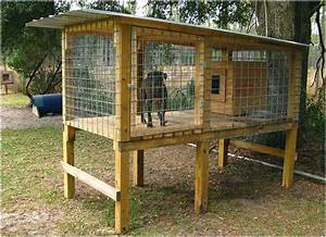 dog cage kennel above the ground kennels can also look With looking for dog kennels