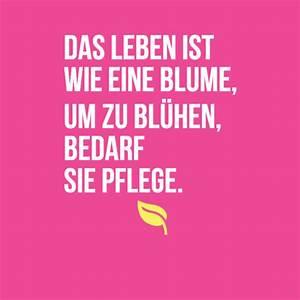 Liebe Ist Wie Eine Blume : top 75 sch ne spr che ber das leben mit bilder zitatelebenalle ~ Whattoseeinmadrid.com Haus und Dekorationen