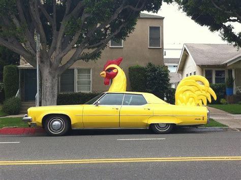 Car Humor, Chicken Humor